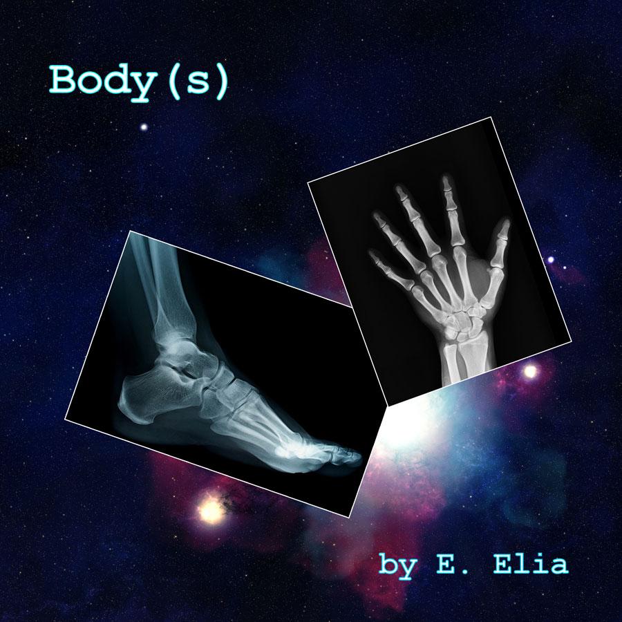 Body(s)